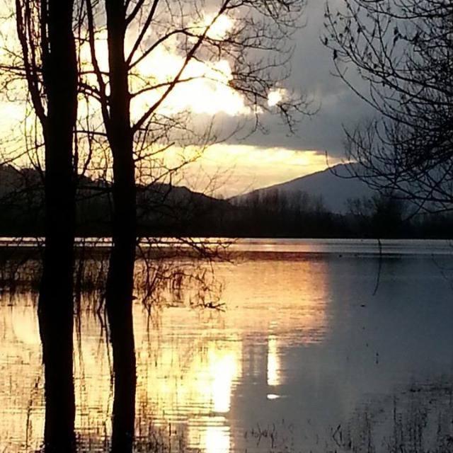 Tarzo lago